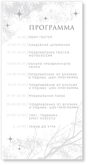 Зимняя сказка - программа дня