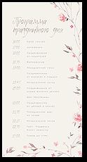 Нежное цветение - программа дня