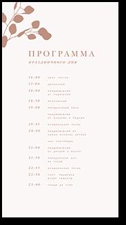 Эвкалипт - программа дня
