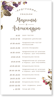 Ежевика - программа дня