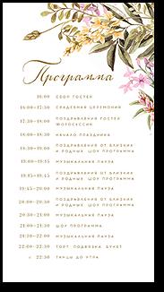 Цветы на лугу - программа дня
