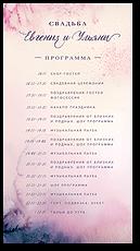 Млечный путь - программа дня