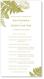 Папоротник - программа дня