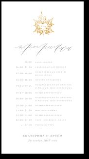 Клён - программа дня
