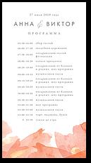 Эфир - программа дня