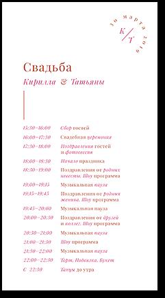 Камертон - программа дня