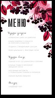 Черноплодная рябина - меню