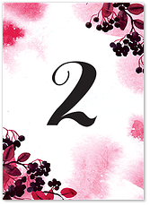 Черноплодная рябина - номер стола