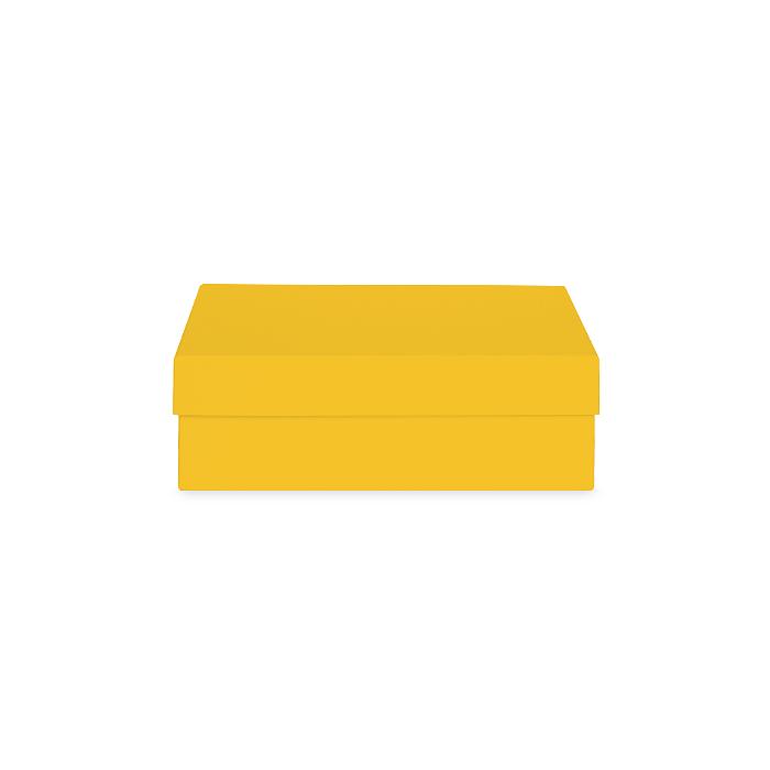 Коробка жёлтая 210х150х70 мм